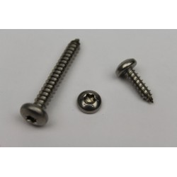 RVS cilinderkop torx - DIN 9477